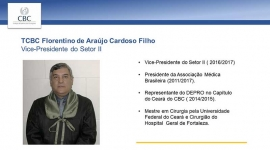 Vice-Presidente do Setor II