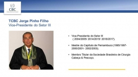 Vice-Presidente do Setor III